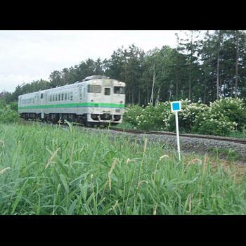 photo-002-005