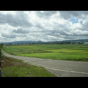 photo-006-001