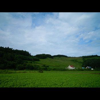 photo-026-004