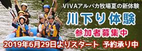 VIVAアルパカ夏の新体験 川下り体験参加者募集中