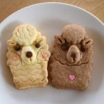 パカさんクッキー