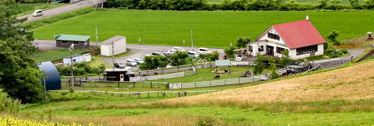 斜面から撮影した牧場
